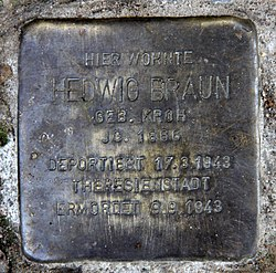 Photo of Hedwig Braun brass plaque