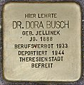 Stolperstein für Dora Busch (Heidelberg).jpg
