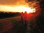 File:Sunset on a hill near a heurige (1711584038).jpg
