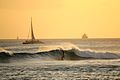 Surfing during the South swell (8933019199).jpg