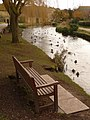 Sutton Poyntz, bench by the mill pond - geograph.org.uk - 1708109.jpg