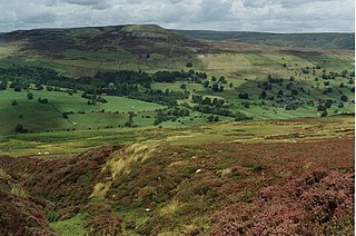 Swaledale valley in Yorkshire, England