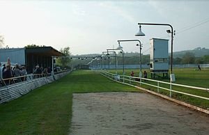 Swansea Greyhound Stadium - Swansea Stadium