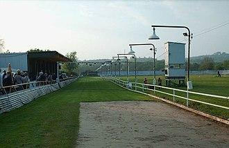 Swansea Greyhound Stadium - Swansea Stadium