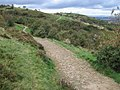 Tameside Trail at Werneth Low - geograph.org.uk - 1007659.jpg