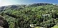 Tbilisi - forest.jpg