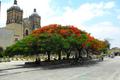 Templo de Santo Domingo de Guzmán, Oaxaca de juárez.png