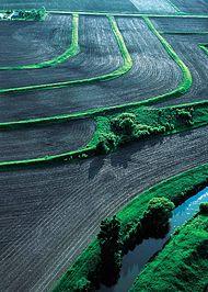 Erosion control wikipedia for Uses of soil wikipedia