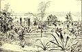 The American garden (1891) (17526152684).jpg