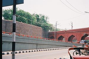 Salimgarh Fort - View of Salimgarh Fort with Arch bridge linking it to Red Fort