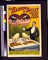 The Barnum & Bailey greatest show on earth-Troupe of very remarkable trained pigs LCCN93505604.jpg
