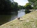 The Boating Lake - geograph.org.uk - 1403970.jpg