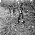 The British Army in North-west Europe 1944-45 B12126.jpg