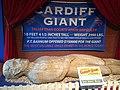 The Cardiff Giant (8923364469).jpg