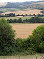 The Giant 'viewing area' viewed from Giant Hill, Cerne Abbas - geograph.org.uk - 212104.jpg