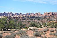 The Needles. Needles Canyonlands UT. (9542382536).jpg