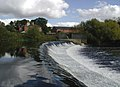 The River Wharfe, Tadcaster - geograph.org.uk - 574185.jpg