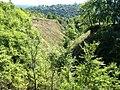 The hare's ravine - panoramio - Oleg Seliverstov (6).jpg
