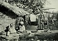 The north-western provinces of India - their history, ethnology, and administration (1897) (14770624175).jpg