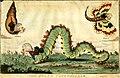 The state caterpillar (BM 1935,0522.4.94).jpg
