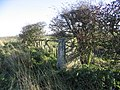 The trig point at Shoreswood Ewe Hill - geograph.org.uk - 281395.jpg