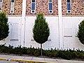 Three Trees (7580006844).jpg
