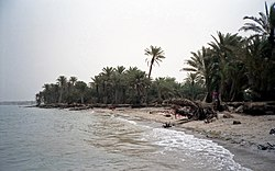 Tihama on the Red Sea near Khaukha, Yemen.jpg