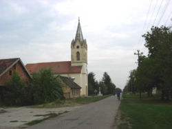 The Holy Trinity Catholic Church