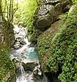 Tolmin Gorge 2.jpg