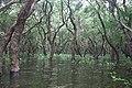 Tonle Sap Lake (9728498995).jpg