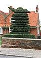 Topiary in Tillingham - geograph.org.uk - 1601392.jpg