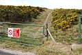 Track leading on to Whiteways Hill - geograph.org.uk - 764553.jpg