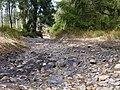 Trail near Rotenbeek 02.jpg