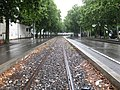 Tram tracks by Confluence.jpg