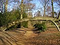 Tree arch at Lily Hill Park - geograph.org.uk - 1181603.jpg