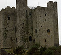 Trim - Norman Castle (3138896069).jpg