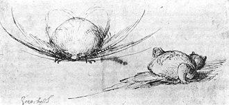 Hieronymus Bosch drawings - Image: Tweemonsters