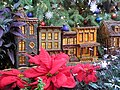 U.S. Botanic Garden at the Holidays (23364652263).jpg