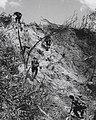 U.S. Marines Assault North Vietnamese Positions, 1966 (cropped).jpg