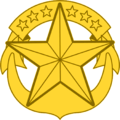 U.S. Navy Command-at-Sea pin.png