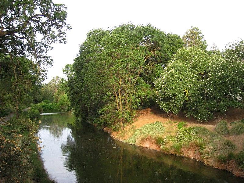 Arquivo: UC Davis Arboretum - view.jpg geral