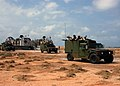 US Navy 050426-N-3557N-351 Marines take part in combined joint task force exercises conducted in Djibouti.jpg
