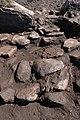 Uddagårdens gånggrift (RAÄ-nr Karleby 105) utgrävning 2005-06-01 0029.JPG
