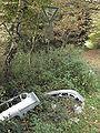 Umweltverschmutzung im Naturschutzgebiet Naafbachtal.JPG