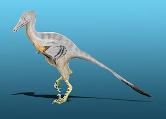 Portezuelo Formation - The winged theropod Unenlagia