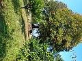 Unnamed Road, Zeda Kondidi, Georgia - panoramio (1).jpg
