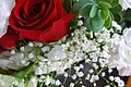 V-day flowers (2).jpg