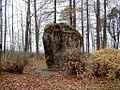 Vadakstes valdnieks - akmens Ezeres parkā 2000-11-04.jpg