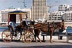 Valetta Malta Carriage-at-St-Elmo-Bay-01.jpg