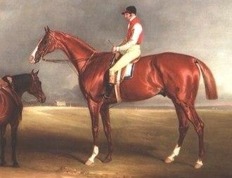 Blacklock (horse) - Blacklock's son Velocipede